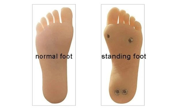 Sex Doll Foot Options